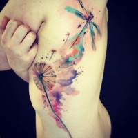 Watercolor dragonfly by Ondrash