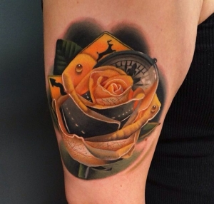 Orange rose by Andres Acosta