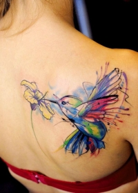 Beautiful watercolor hummingbird