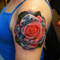 Detailed rose by Andres Acosta