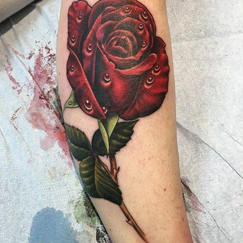 Realistic rose by Jim Sidelinger
