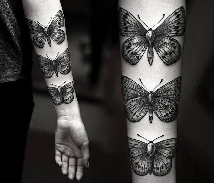 Dotwork butterflies by Kamil Czapiga